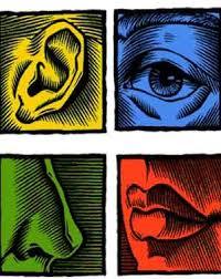 significado de imagenes sensoriales wikipedia de imágenes sensoriales