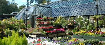 What Is A Walled Garden On The Internet by Explore Our Gardens U0026 Flowers Avoca