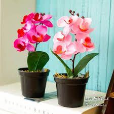 2018 moth orchid butterfly orchid artificial flower simulation