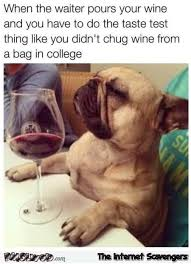 Wine Meme - when the waiter pours your wine funny dog meme pmslweb
