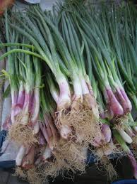Vegetables You Can Regrow by 10 Foods You Can Regrow From Your Kitchen Scraps Install It Direct