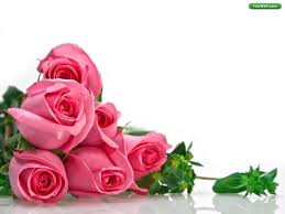 wedding flowers background backgrounds roses wallpapers 76
