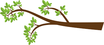 tree and branches clipart 75