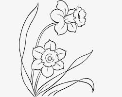 beautiful flowers drawings for kids great drawing