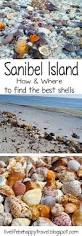best 25 sanibel island ideas on pinterest sanibel florida