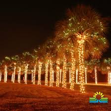 festival of lights orange county festival of lights charleston sc charleston sc pinterest