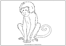 monkey colouring 2