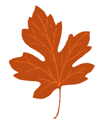 free leaf clipart 123160