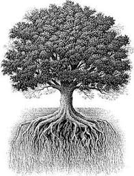 symbolism trees oak