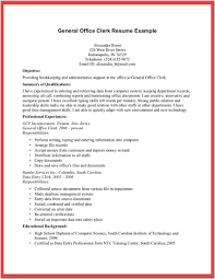 Objective For A General Resume General Manager Resume Sample Page 3 General Resume Objective
