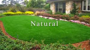 Astro Turf Astro Turf Putting Greens Artificial Dog Grass Installation