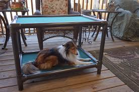 Elevated Dog Beds For Large Dogs At The Fence Love Kuranda Dog Beds