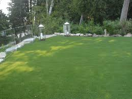 artificial grass pisinemo arizona landscape rock backyard garden