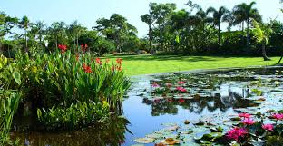 Naples Botanical Gardens Coupons Naples Botanical Garden S Smith Children S Garden Must Do
