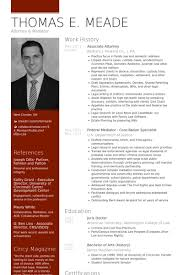 resume cv example 0 curriculum vitae template nardellidesign com