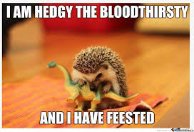Hedgehog Meme - tardaasa hedgehog by cuteasfuck meme center