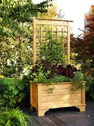 garden planters with trellis backing garden trellis planters