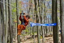 Treetop Canopy Tours by Wvutoday Archive