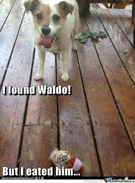 Bad Dog Meme - bad dog very bad dog by percyfan45 meme center
