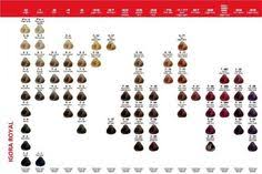 igora royal hair color color to develiper ratio puple hair color how to berry haircolor formula kayla goodlet