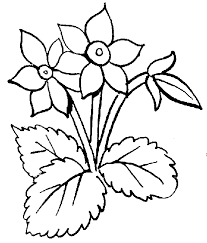 black white clipart flowers interesting cliparts