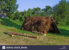 rural landscape wooden tent for straw drying stock photo
