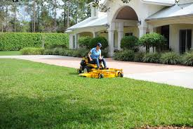 lawn mower sales lawn mower repairs lawn maintenance products