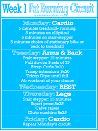lose weight programs gym beginners fat burning workout curcuit week 1 fat burning workout