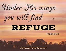 christian quote his wings you will find refuge