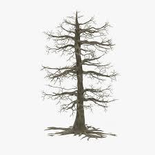 dead oak tree 3d model