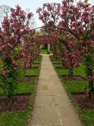 in the walled garden picture of grey u0027s court henley on thames