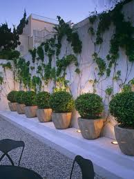 Patio Pictures And Garden Design Ideas by 704 Best Container Gardening Ideas Images On Pinterest Pots