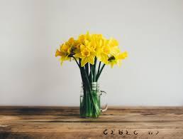 the secret to making your cut flowers last longer webtokri
