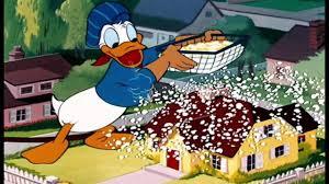 ᴴᴰ donald duck u0026 chip dale cartoon kids donald duck