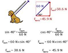 a word slide defining vectors and scalars education pinterest