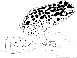 Blue Poison Dart Frog Coloring Page Free Frog Coloring Pages Frog Colouring Page