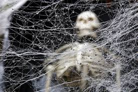 halloween spider background spiders and spider webs chicago costume