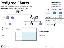 genetics practice problems pedigree tables genetics