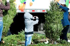 Christmas Trees Nc U S Department Of Defense Photo Essay