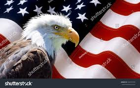 Bald Eagle And American Flag Background Wallpaper North American Bald Eagle Stock Photo