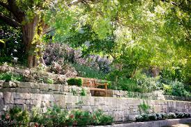 Botanic Garden Sydney The Royal Botanic Gardens A City Oasis Sydney