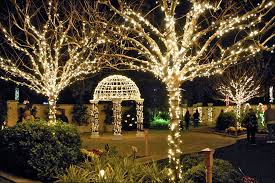 norfolk botanical gardens christmas lights 2017 christmas botanical gardens christmas lights lovely pinellas