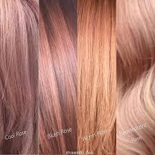 rose gold hair color 177 best hair color images on pinterest bag color kit and diy