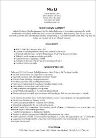 Sample Professional Summary Resume by Resume Templates Package Handler Professional Summary
