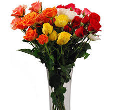 flowers in bulk buy assorted wholesale spray roses online