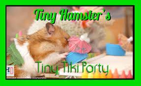 tiny hamster u0027s tiny tiki party ep 6 youtube