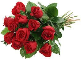 flowers canada flowers to canada courier company karachi pakistan cakes flowers