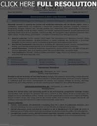 resume format for supply chain executive resume writers online technical managment resume sample executive resume writing services templates template free online within technical resume writing services