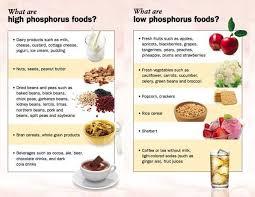 phosphorus in foods chart socialmediaworks co