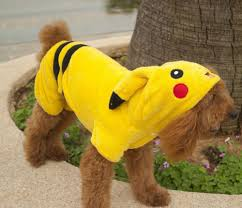 cute dog halloween costumes dog halloween costumes the 10 most amazing and simple costumes